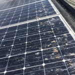 Noosa Solar Panel Cleaners