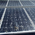 Maroochydore Solar Panel Cleaning