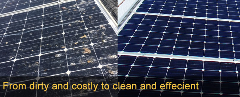 solar panel cleaning service Brisbane