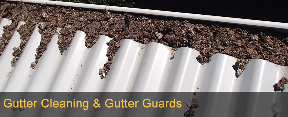 Gutter cleaning Sunshine Coast to Brisbane
