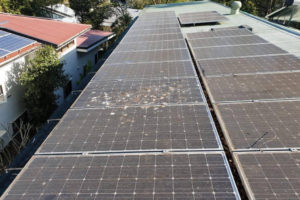 Pure Sunshine Solar Cleaning Before 1_rs